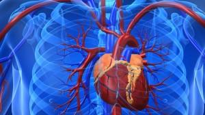 cuore e salute