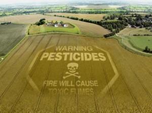 Pesticidi-No-grazie_article_full_l